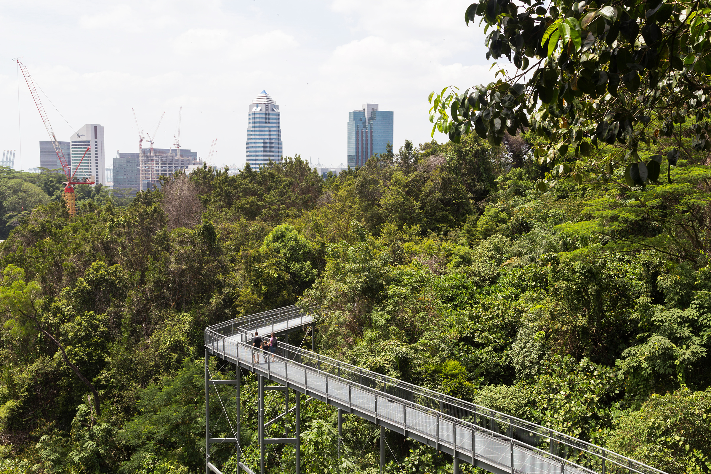 Urban hiking in Singapore