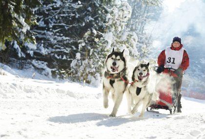 Vacanze sulla neve per fare tutti felici