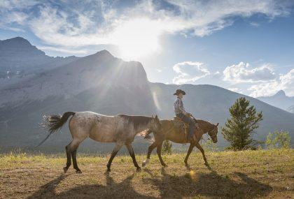 Avventure attive i migliori viaggi per chi  a caccia di emozioni forti