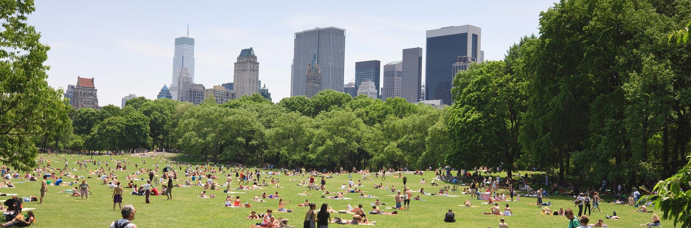 Luoghi e attrazioni in New York