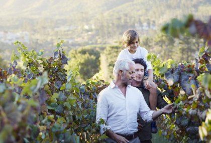 Aventuras comestibles viajes gastronmicos para familias