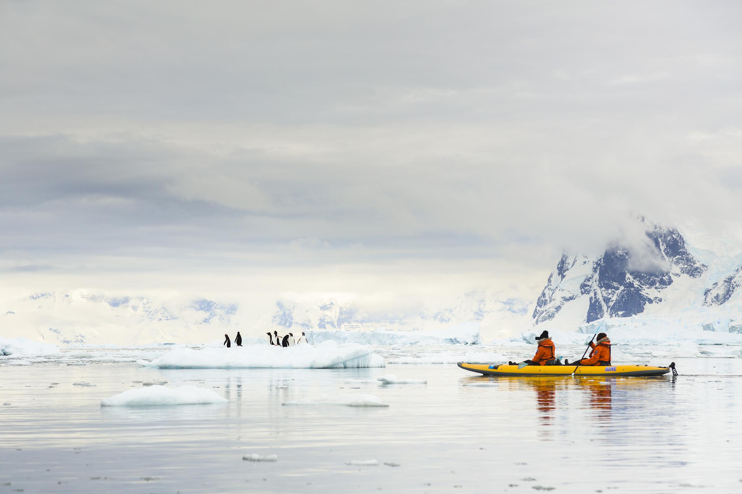 Navegacin polar en kayak Antrtica