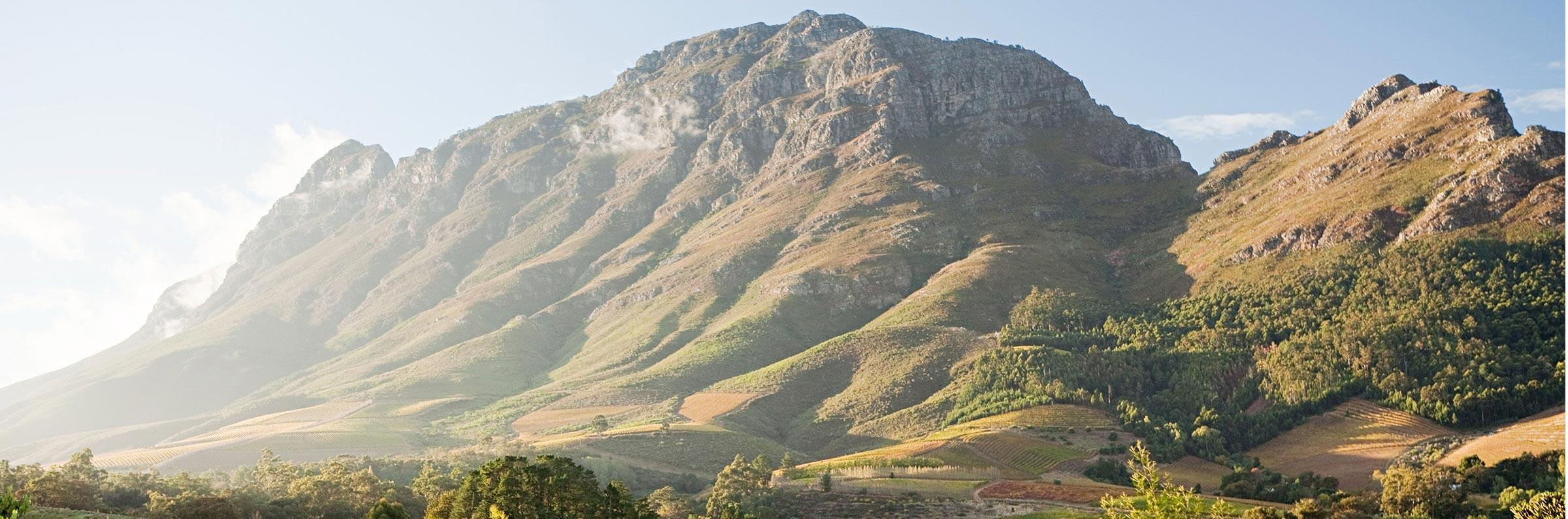 Viaje de un da in Ciudad del Cabo