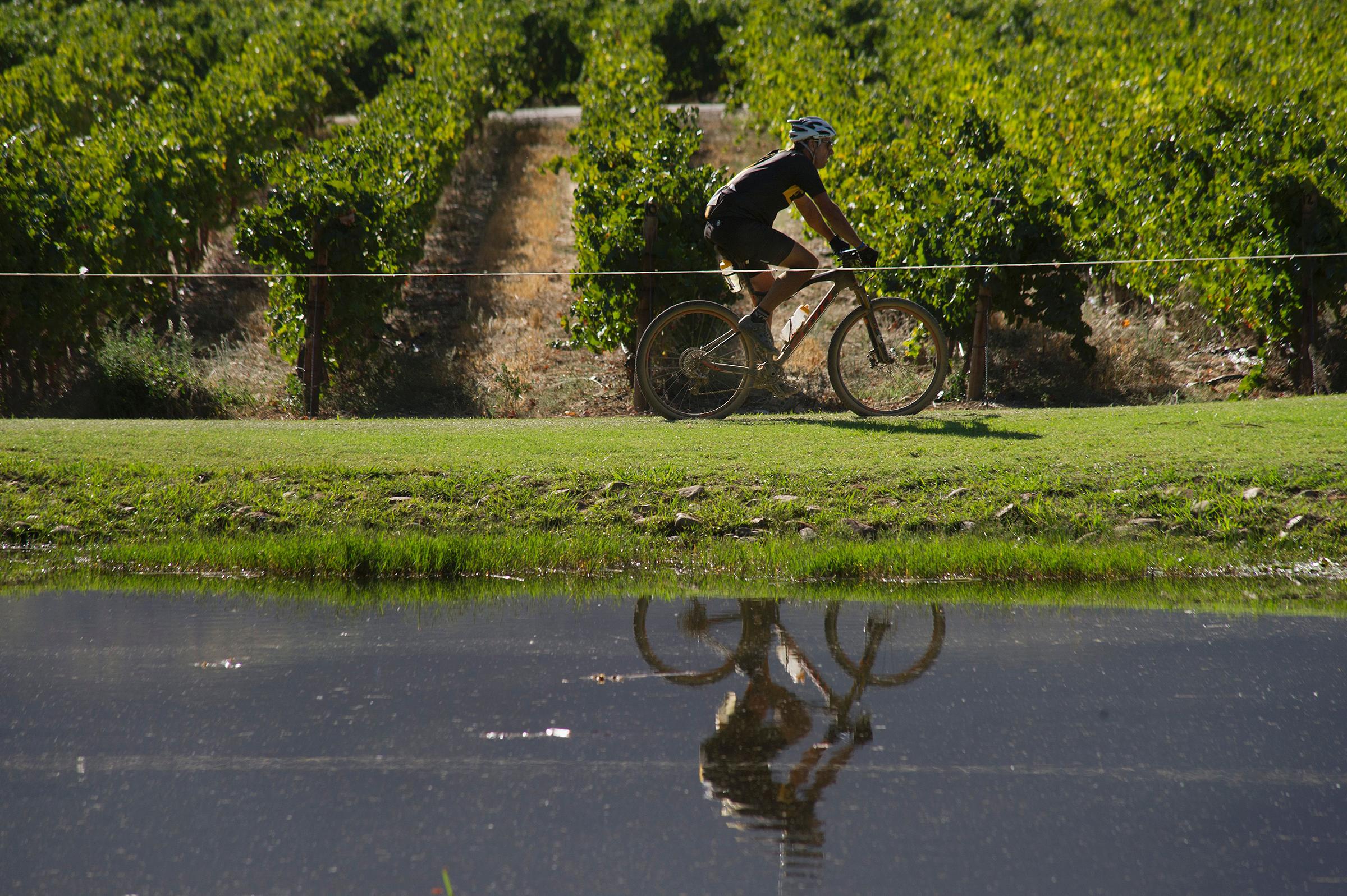 A 45 minutos de Ciudad del Cabo Bicicletas y cata de vinos en Stellenbosch y Franschhoek