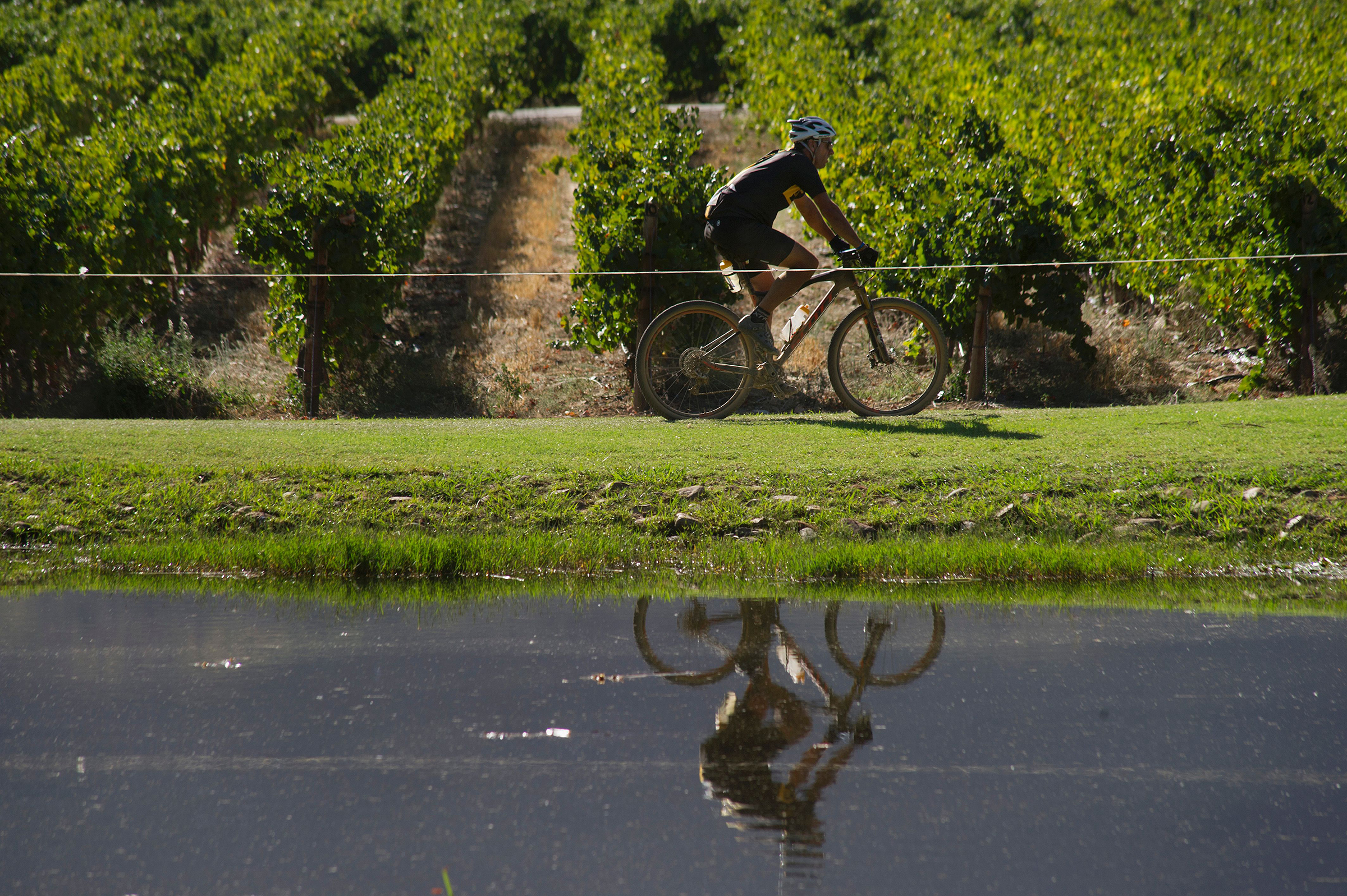 45 minutes from Cape Town Bike and wine tasting in Stellenbosch and Franschhoek