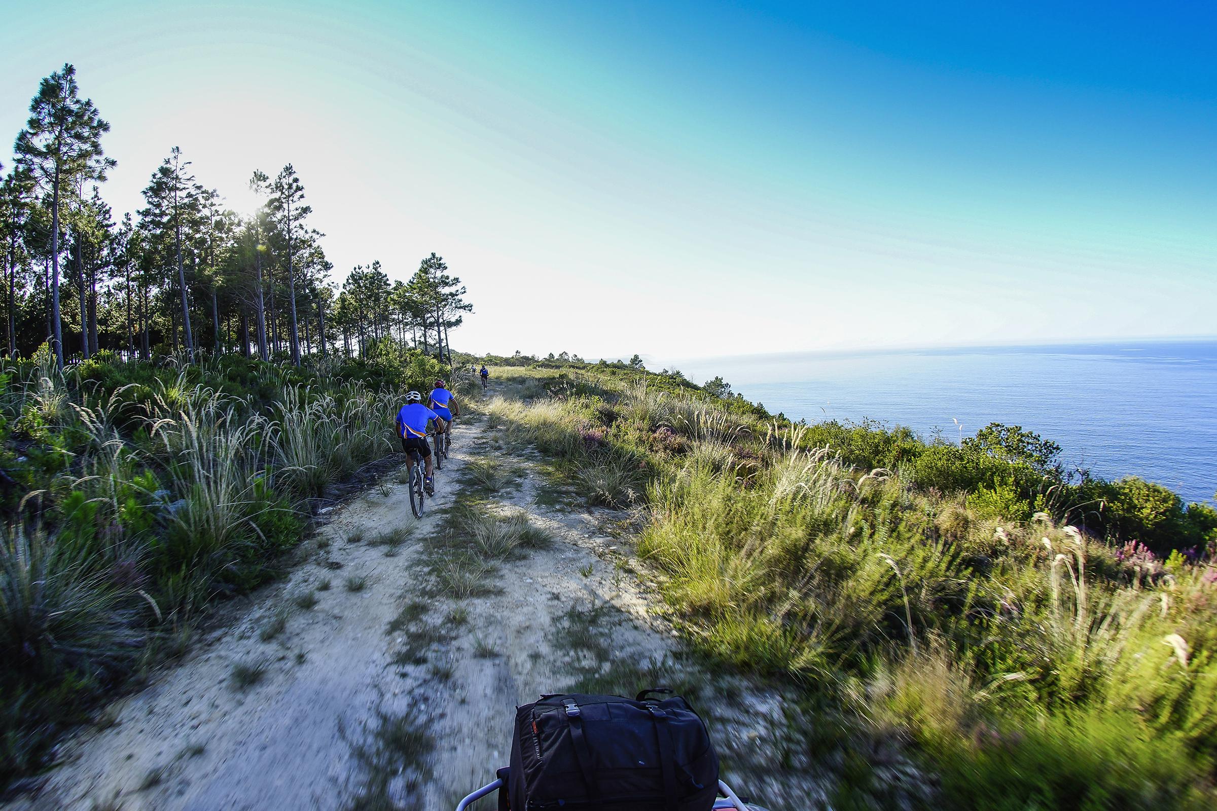 The Garden Route South Africa summer sun escapes