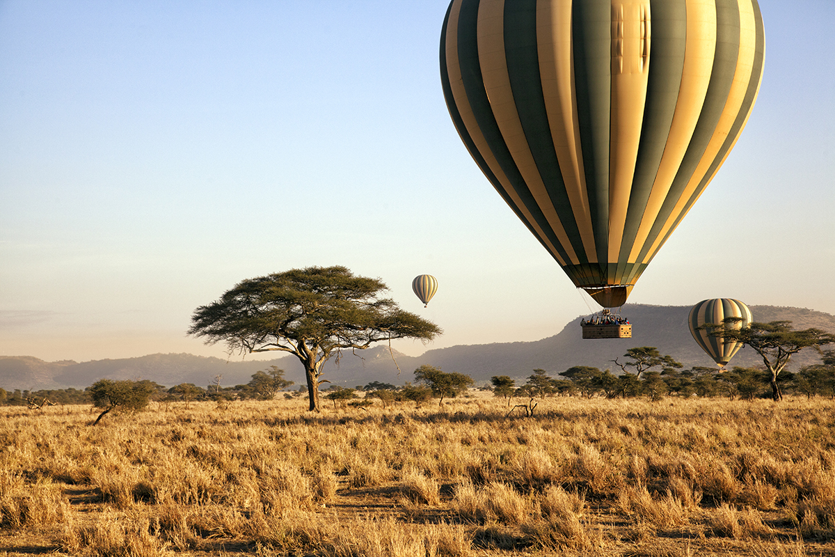 Three hot air balloons drift over the plains of The Serengeti National Park at dawn