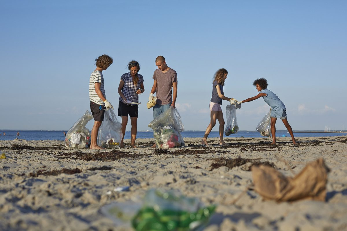 Eco traveller beach clean up